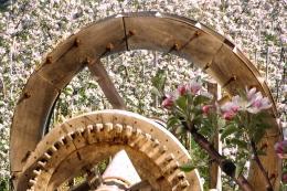 Frühling-im-Vinschgau